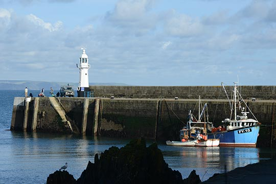 Outer Harbour Mevagissey